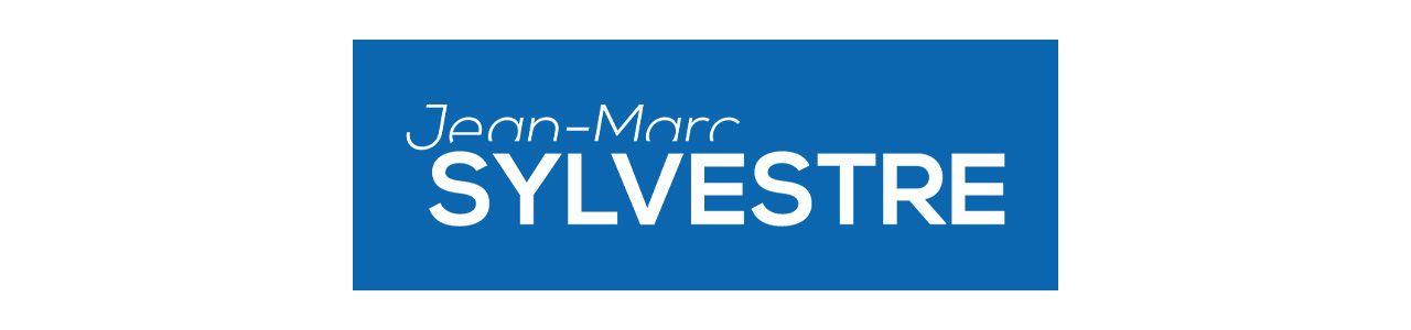 Le Blog de Jean Marc Sylvestre logo
